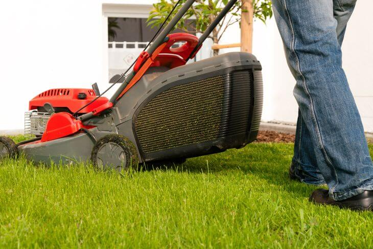 Man using push lawnmower to mow new sod.