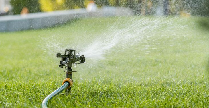 A sprinkler watering front yard lawn.